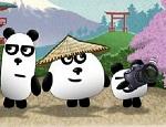 دببة الباندا في اليابان
