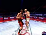 الملاكمة الحرة