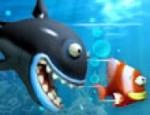 حكايات الأسماك
