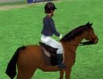 حصان القفز 2