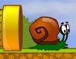 مغامرات الحلزون بوب