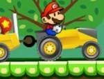 شاحنة ماريو توصيل الفطر
