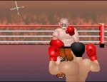 الملاكمة العنيفة
